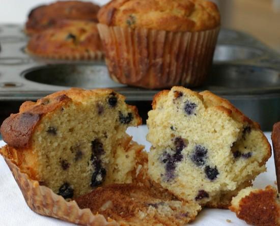 Blueberry corn muffin