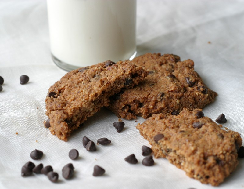 Bite of chocolate chip cookie (almond meal)